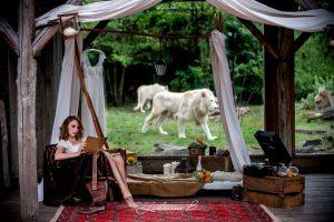 Mariage Au Thème De Décoration Safari Chic Avec Lion Et Scénographie Bohème.