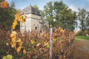 Le Jardin En Extérieur Et Lieu De Cérémonie De Bordeaux Et De Gironde Pour Le Mariage En Hiver Romantique.