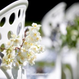 Décoration Chaise De Mariage : Idée Et Fleur.