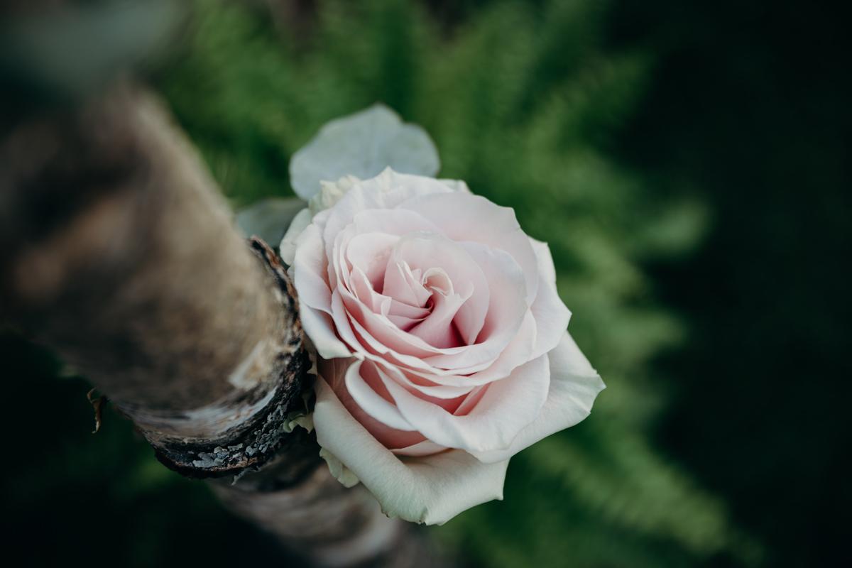 Fleur décoration de mariage et événement.