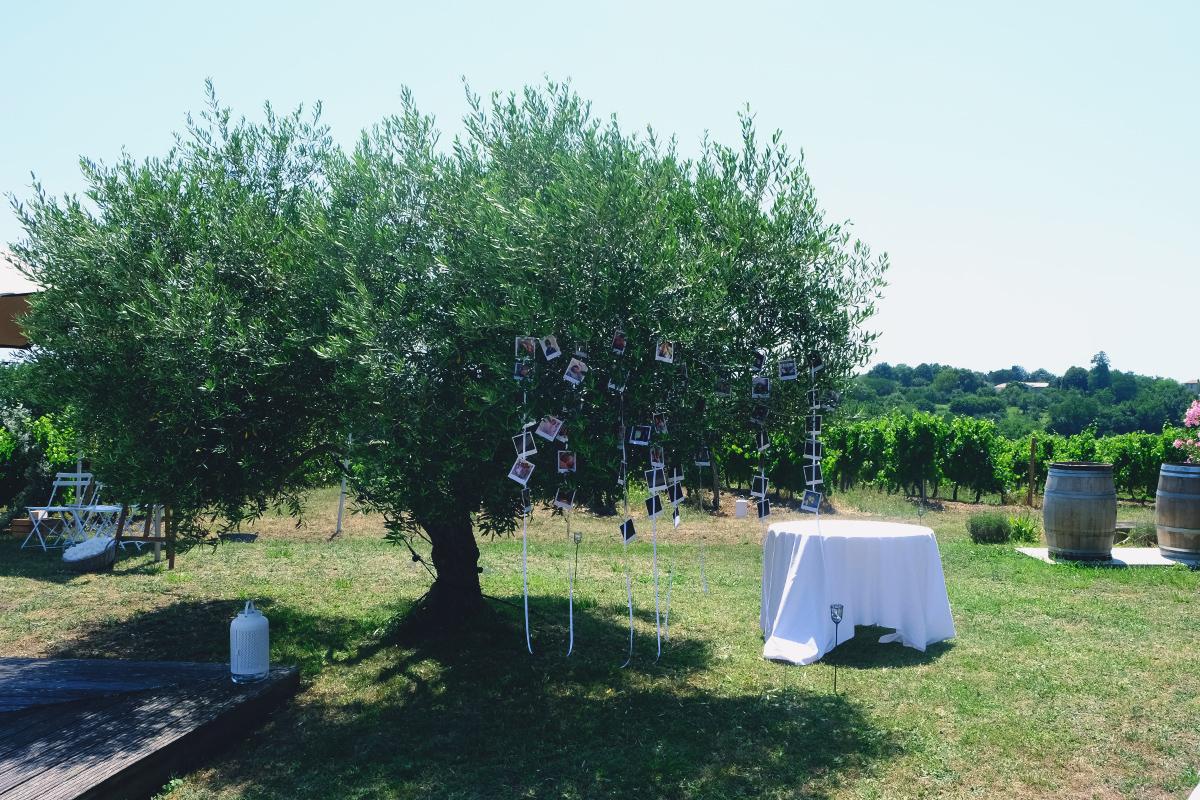 Domaine de Saint Amand à Cambes pour une décoration de lieu de mariage et réception en Gironde.