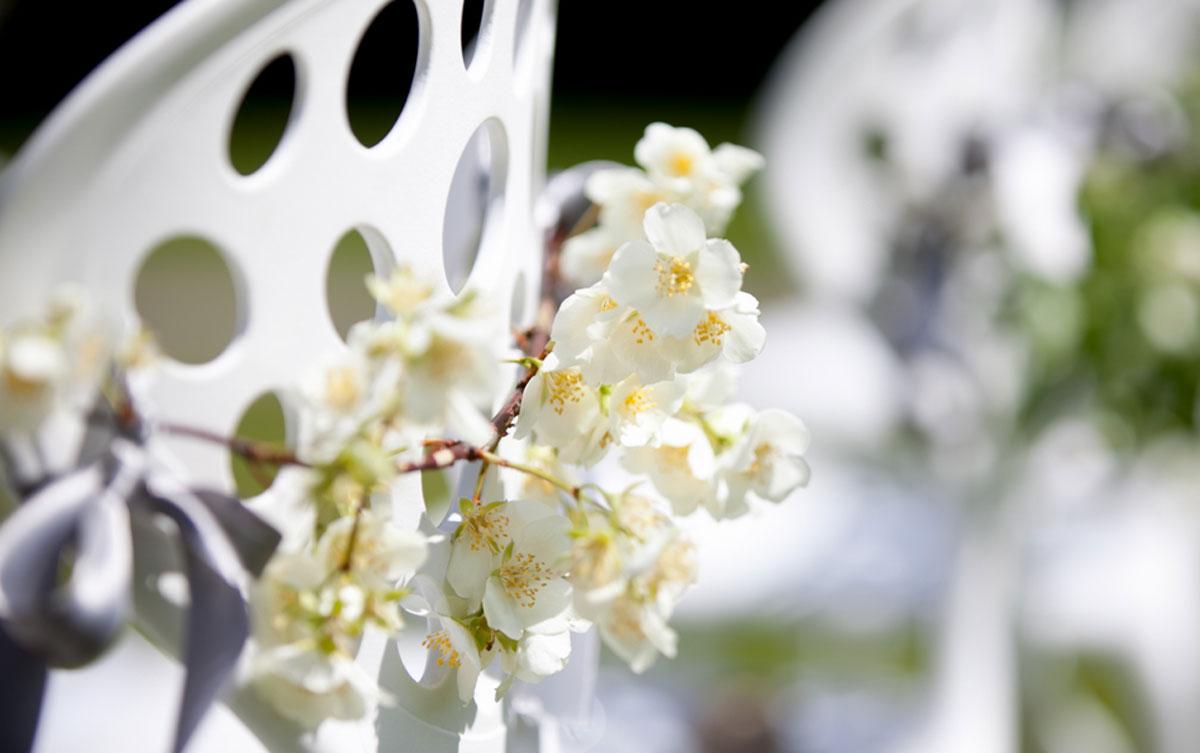 Fleurs du mois de mai pour mariage et événement champêtre et bouquet de décoration en fleur de poirier.