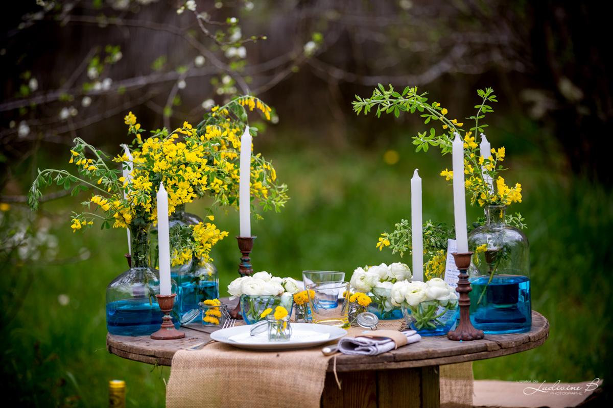 Fleurs du mois de mai pour mariage et événement champêtre et bouquet de décoration de fleur du genêt d'arbuste.