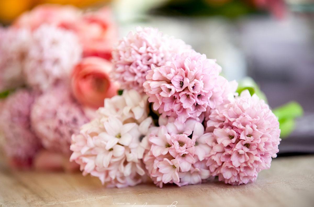 Fleurs du mois de mai pour mariage et événement champêtre et bouquet de décoration en jacinthe.