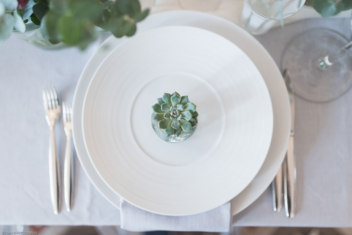 Succulente et plante grasse de mariage de décoration de réception chic et champêtre.