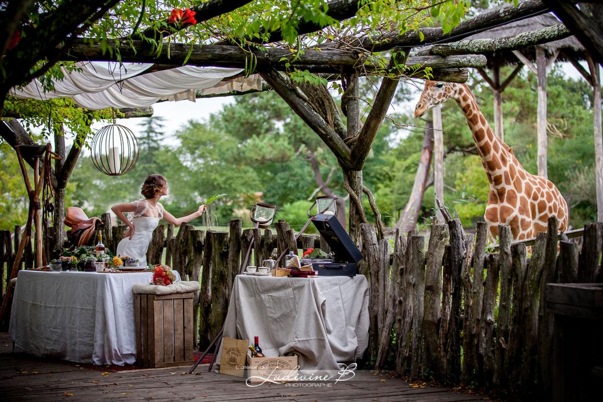 Décoration de mariage sur le thème du mariage en Afrique dans un safari avec nature, girafe et animaux.