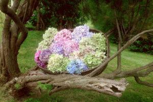 Décoration En Bouquet Et Hortensia De Réception Dans Un Jardin En Extérieur Champêtre Bohème.