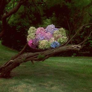 Décoration De Branche D'arbre En Bouquet D'hortensia Au Style Original.
