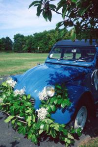 Décoration En Fleur De Gypsophile Et De Feuillage De 2CV Ou Deux Chevaux De Mariage.