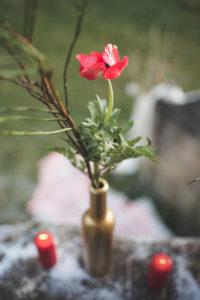 Fleur Rouge Et Feuillage Vert Dans Une Bouteille Et Vase Atypique.