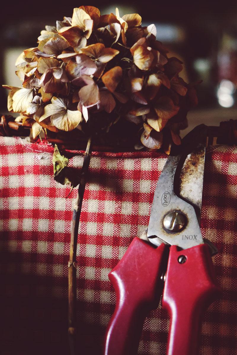 Le sécateur pour fleur, feuillage et branche en outils et matériel de fleuriste et décoratrice professionnel de mariage et événement.